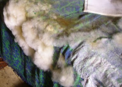 mold on couch
