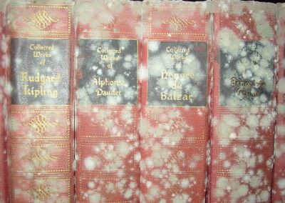 mold on books